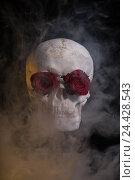 Человеческий череп с красными розами в глазницах в дыму. Стоковое фото, фотограф Elisanth / Фотобанк Лори