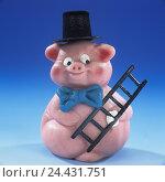 Купить «Marzipan pig, chimney sweep, Still life, product photography, food, marzipan, sweetly, sweet, sweetness, luck pig, luck bringer, New Year's Eve, New Year, icon, luck, pink ones», фото № 24431751, снято 14 января 2003 г. (c) mauritius images / Фотобанк Лори