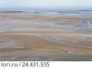 Купить «Побережье моря во время отлива, Сент-Мишель, Франция», фото № 24431935, снято 26 октября 2011 г. (c) Виталий Батанов / Фотобанк Лори