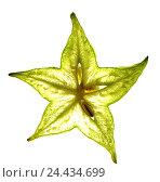 Купить «Stern's fruit, Karambola, slice, close up, cirque ambo lax yew, flesh, cross section, fruit, exotic, tropical, tropical fruit, Carambola, Karambole, Stern...», фото № 24434699, снято 11 октября 2005 г. (c) mauritius images / Фотобанк Лори