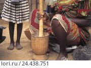 Купить «Senegal, Dakar, woman, grain centre punch, crush, girls, detail, mortar, freight haulier, grain, chop up, grind, women's work, West, Africa, Africa, tradition,», фото № 24438751, снято 17 октября 2003 г. (c) mauritius images / Фотобанк Лори