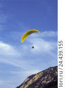 Купить «Austria, Tyrol, Pertisau, paraglider plane, Europe, alps, mountains, mountains, sport, sports area, aviation, aerial sport, trend sport, sport, Paragliding...», фото № 24439155, снято 20 октября 2005 г. (c) mauritius images / Фотобанк Лори