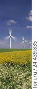 Купить «Germany, Schleswig-Holstein, Niebuell, wind park, wind wheels, summer,», фото № 24439835, снято 21 февраля 2018 г. (c) mauritius images / Фотобанк Лори