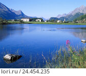 Купить «Switzerland, the upper Engadine, Sils-Baselgia, local view, river, Europe, Graubuenden, the Engadine, place, mountains, mountain landscape, waters, scenery, nature, rest, silence, Idyll, summer», фото № 24454235, снято 7 октября 2005 г. (c) mauritius images / Фотобанк Лори