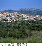 Купить «Italy, Sardinia, province Sassari, Arzachena, local overview, island, the Mediterranean Sea, Sardegna, east coast, Costa Smeralda, local view, place, place, mountainous region, scenery», фото № 24455743, снято 22 ноября 2002 г. (c) mauritius images / Фотобанк Лори
