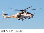 Купить «Армейский ударный вертолёт Ми-24 в окраске миротворческих сил ООН», эксклюзивное фото № 24463331, снято 6 декабря 2016 г. (c) Александр Тарасенков / Фотобанк Лори