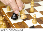 Купить «Chess, man's hand, characters, move, successfully, man, detail, hand, 38 years, players, chess, parlour game, board game, board, game, chess, strategy...», фото № 24463951, снято 20 августа 2018 г. (c) mauritius images / Фотобанк Лори