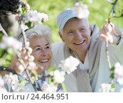 Купить «Garden, Senior couple, happy, portrait, blossoms, apple-tree, look, spring enjoy vacation, retirement, pension, leisure time, walk, recreation, rest, nature...», фото № 24464951, снято 25 мая 2004 г. (c) mauritius images / Фотобанк Лори