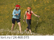 Купить «Mountain pasture, nut, subsidiary, Nordic Walking woman, 38 years, 30-40 years, girls, teenagers, young persons, 13 years, together, sportswomen, sportily...», фото № 24468015, снято 16 сентября 2004 г. (c) mauritius images / Фотобанк Лори