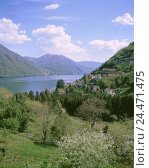 Купить «Italy, Lombardy, Lake Como, Argegno, local view, Europe, Northern Italy, mountain landscape, mountains, mountains, Lago Tu Como, prealpine lake, place...», фото № 24471475, снято 25 октября 2005 г. (c) mauritius images / Фотобанк Лори