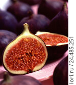 Купить «Figs, completely, halves, fruit, fruits, tropical, tropical fruits, ficus carica, Maulbeergewächse, food, eat, product photography, Still life», фото № 24485251, снято 27 сентября 2005 г. (c) mauritius images / Фотобанк Лори