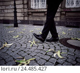 Купить «Man, detail, feet, sidewalk, banana peels, icon, slide danger man's feet, pedestrians, street, cobblestones, waste, bananas, peels, throw away, inadvertence...», фото № 24485427, снято 9 мая 2005 г. (c) mauritius images / Фотобанк Лори