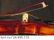 Купить «Violin, fiddlestick, detail, violin, musical instrument, stringed instrument, descant instrument, resonance body, bridge, bow, violin game, to violin games...», фото № 24495119, снято 29 декабря 2005 г. (c) mauritius images / Фотобанк Лори