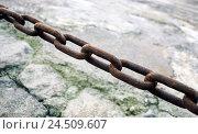 Купить «Iron chain, detail, chain links, rust, slabs, catena, cordon, blocking, corrosion, Weather-beaten, paving-stones, stones, force, starch, stop, cohesion...», фото № 24509607, снято 13 августа 2004 г. (c) mauritius images / Фотобанк Лори