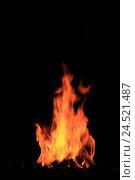 Купить «Campfire, flames, night,», фото № 24521487, снято 15 сентября 2009 г. (c) mauritius images / Фотобанк Лори
