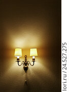 Купить «Bracket lamp, shine, wall, lamp, inside, room, room, in an old-fashioned way, nostalgically, lampshades, beams light, light, lighting, copy space,», фото № 24527275, снято 25 февраля 2009 г. (c) mauritius images / Фотобанк Лори