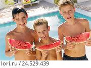 Купить «Boys, pool margin, watermelon, hold, half portrait,», фото № 24529439, снято 3 ноября 2009 г. (c) mauritius images / Фотобанк Лори