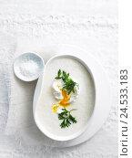 Купить «Plate, Navettensuppe, from above, food, eat, soup plate, peel, hors-d'oeuvre, soup, egg, parsley, salt, salt dished plate, May turnip soup,», фото № 24533183, снято 21 июля 2009 г. (c) mauritius images / Фотобанк Лори