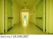 Купить «Hospital, swinging door openly, hall, deserted, clinic, walk, hospital hall, hospital walk, floor selection, room doors, doors, wards, blank, neon light...», фото № 24540887, снято 16 сентября 2008 г. (c) mauritius images / Фотобанк Лори