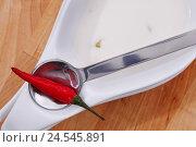 Купить «Chilli pod, soup spoon,», фото № 24545891, снято 5 марта 2010 г. (c) mauritius images / Фотобанк Лори