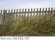 Купить «Dune, dune grass, wooden paling,», фото № 24552131, снято 15 октября 2007 г. (c) mauritius images / Фотобанк Лори