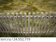 Купить «Dune, dune grass, wooden paling,», фото № 24552719, снято 15 октября 2007 г. (c) mauritius images / Фотобанк Лори