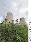 Купить «Germany, Bavaria, nuclear power plant, field Grafenrhein, cooling towers, smoke, meadow, thistles, Lower Franconia, field Grafenrhein, atomic power station...», фото № 24557031, снято 24 октября 2008 г. (c) mauritius images / Фотобанк Лори