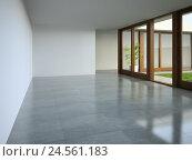 Купить «3D визуализация, интерьер пустой комнаты», иллюстрация № 24561183 (c) Hemul / Фотобанк Лори