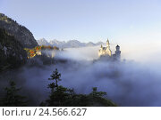 Купить «Germany, Bavaria, Allgäu, castle Neuschwanstein, fog, attraction, structure, outside, autumn, king, culture, fairytale castle, lock, place of interest...», фото № 24566627, снято 23 марта 2019 г. (c) mauritius images / Фотобанк Лори