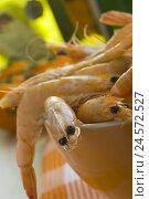 Купить «Shrimps, cooked, ceramics peel, medium close-up, crustaceans, Seafood, seafood, Still life, Food, food, larders, food, sea animals,», фото № 24572527, снято 23 июля 2018 г. (c) mauritius images / Фотобанк Лори