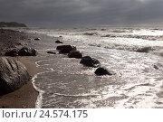 Купить «Baltic beach, stormy atmosphere,», фото № 24574175, снято 15 августа 2018 г. (c) mauritius images / Фотобанк Лори