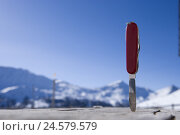 Купить «Switzerland, Graubuenden, 'Val Müstair', 'Swiss penknife', wooden table,», фото № 24579579, снято 4 апреля 2008 г. (c) mauritius images / Фотобанк Лори