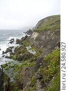 Купить «Ireland, Munster, Kerry, Dingle Peninsula, coastal scenery, beech trees, Rock, Water, Scenery, Stones, rocky, steep coast, coast, sea, brusquely, view, foggy, hazy, cloudily, dreary, surf,», фото № 24580927, снято 10 апреля 2008 г. (c) mauritius images / Фотобанк Лори