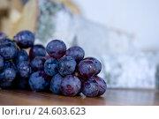 Купить «Grapes, arranges, chimney wooden, Stilllife», фото № 24603623, снято 27 ноября 2007 г. (c) mauritius images / Фотобанк Лори