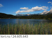 Купить «Germany, Upper Bavaria, Mittenwald, loud lake, Bavaria, Werdenfels, mountains, lake, mountain lake, bath lake, deserted, rest, silence, Idyll, destination...», фото № 24605643, снято 12 декабря 2007 г. (c) mauritius images / Фотобанк Лори
