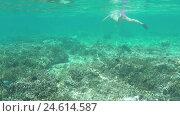 Купить «Underwater view of diver in mask», видеоролик № 24614587, снято 12 ноября 2016 г. (c) Гурьянов Андрей / Фотобанк Лори