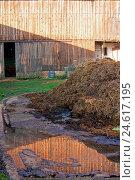 Купить «Agriculture & Food», фото № 24617195, снято 16 июня 2019 г. (c) easy Fotostock / Фотобанк Лори