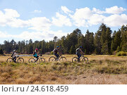 Купить «Family mountain biking in countryside, Big Bear, California», фото № 24618459, снято 21 октября 2015 г. (c) easy Fotostock / Фотобанк Лори
