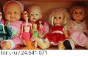 Купить «Several dolls on shelf», видеоролик № 24641071, снято 6 ноября 2016 г. (c) Потийко Сергей / Фотобанк Лори