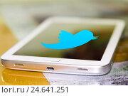 Купить «Иконка Твиттера на  экране сотового телефона», фото № 24641251, снято 13 января 2015 г. (c) Сергеев Валерий / Фотобанк Лори