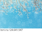 Winter background - frosty branches of the winter tree against the blue sunny sky under falling snow, фото № 24641547, снято 9 января 2016 г. (c) Зезелина Марина / Фотобанк Лори
