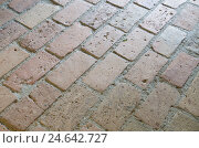 Купить «Clay brick floor,», фото № 24642727, снято 22 ноября 2010 г. (c) mauritius images / Фотобанк Лори