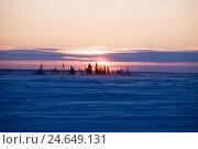 Canada, Manitoba, Wapusk Nationwide park, nature, width, trees, winters, sundown,, фото № 24649131, снято 25 ноября 2008 г. (c) mauritius images / Фотобанк Лори