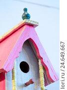 Купить «Bird house, close-up, detail,», фото № 24649667, снято 19 августа 2018 г. (c) mauritius images / Фотобанк Лори