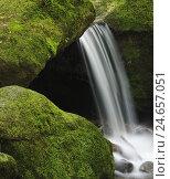 Купить «Germany, Baden-Wurttemberg, Black Forest, brook Gertels, Gertelsbacher waterfall, rock, moss,», фото № 24657051, снято 21 августа 2018 г. (c) mauritius images / Фотобанк Лори