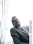 Купить «Businessman, smile, portrait, cropped,», фото № 24663927, снято 19 марта 2019 г. (c) mauritius images / Фотобанк Лори
