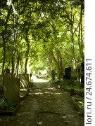 Купить «Historically, cemetery, gravestone, Judaism, Berlin,», фото № 24674611, снято 19 сентября 2018 г. (c) mauritius images / Фотобанк Лори