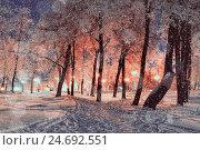 Купить «Winter night landscape with snowflakes», фото № 24692551, снято 17 июля 2019 г. (c) Зезелина Марина / Фотобанк Лори