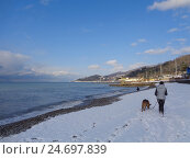 Купить «Девушка с собакой идут по снежному берегу моря», фото № 24697839, снято 26 января 2016 г. (c) DiS / Фотобанк Лори