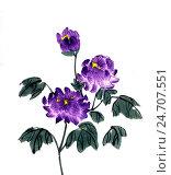 Купить «Хризантемы. Рисунок в стиле се-и», иллюстрация № 24707551 (c) Заноза-Ру / Фотобанк Лори